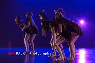 Han Balk Voorster Dansdag 2016-4396-2.jpg