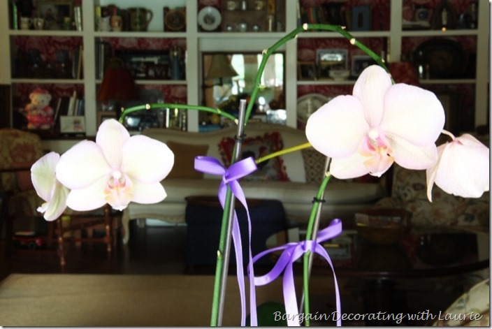 Orchid Centerpiece-Bargain Decorating with Laurie