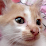 Mintra .W's profile photo