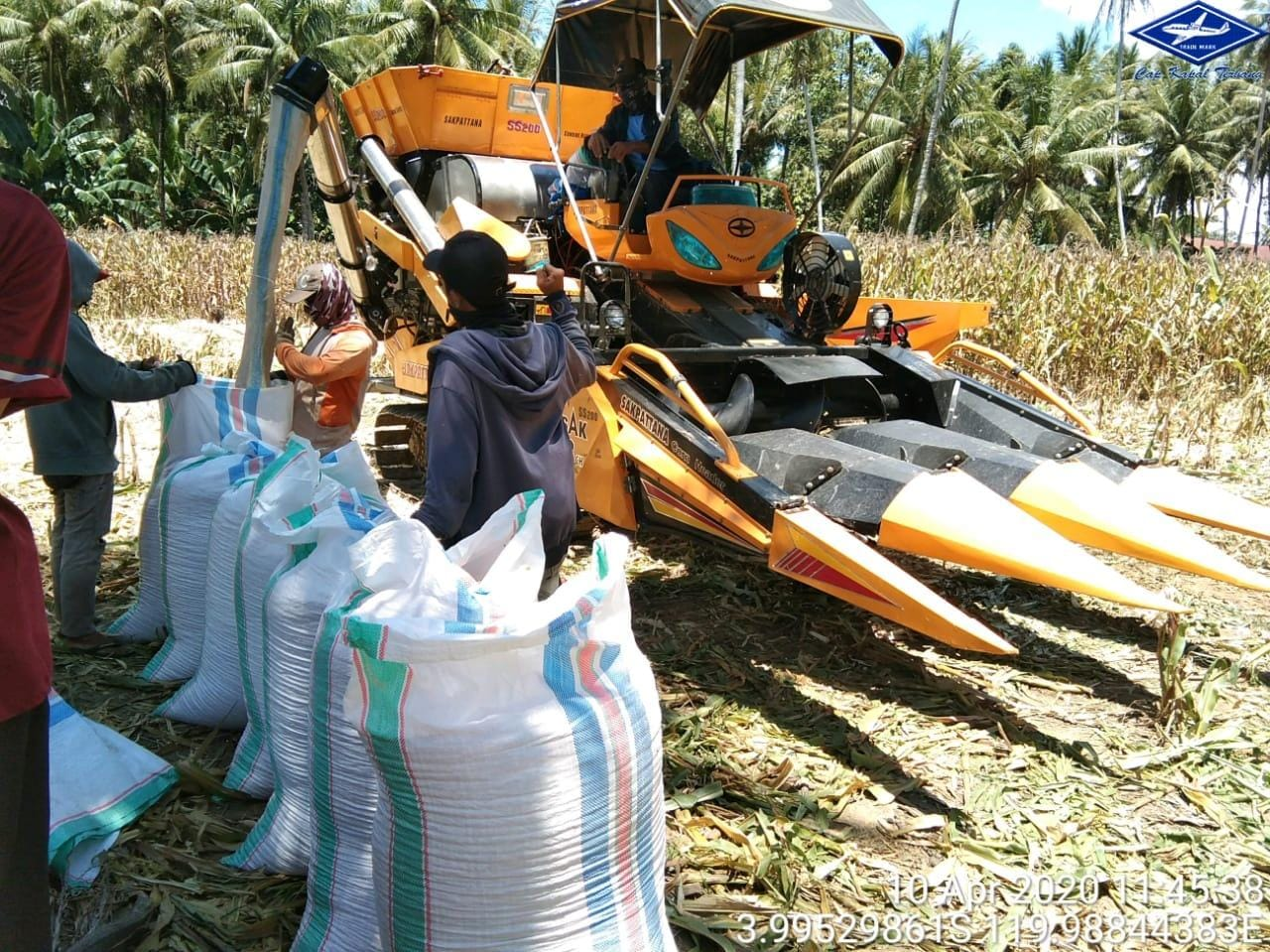 Pakai Alsintan Saat Panen, Produksi Jagung di Desa Malakke Cukup Memuaskan