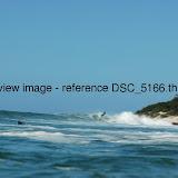 DSC_5166.thumb.jpg