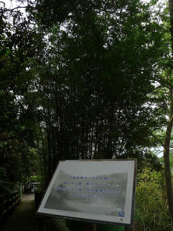 TAIWAN.Dans la région de Nantou, au centre de Taiwan - P1100273.JPG
