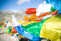 Tibet Portfolio