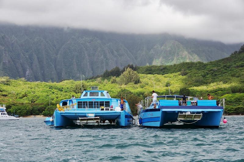06-18-13 Waikiki, Coconut Island, Kaneohe Bay - IMGP7018.JPG
