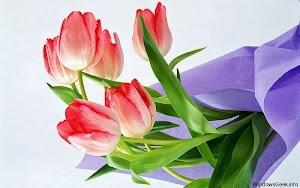 imagini-cu-flori-pentru-desktop.jpg