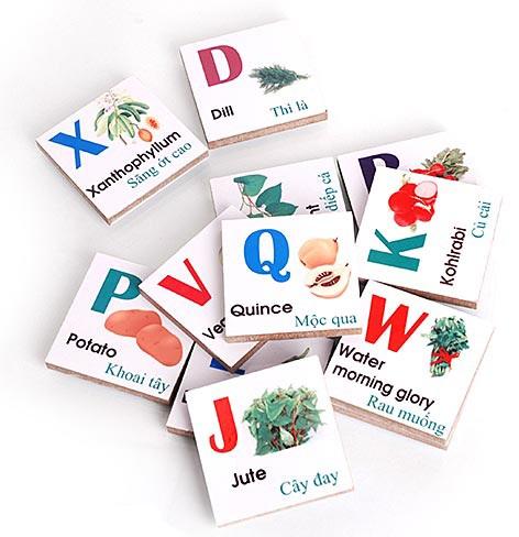 Bộ Alphabet chữ cái chủ đề hoa quả A03.2 bao gồm 48 miếng gỗ gắn nam châm