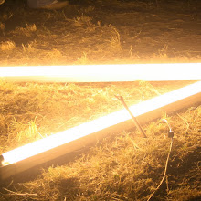 Področni mnogoboj, Sežana 2007 - IMG_7928.jpg