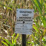 Guilford Salt Meadows Sanctuary Planting - IMG_7831.JPG