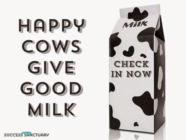leche ecologica mejor calidad ganaderia extensiva intensiva