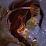 Amy HunterofArtemis's profile photo