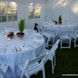 caitlin wedding.jpg