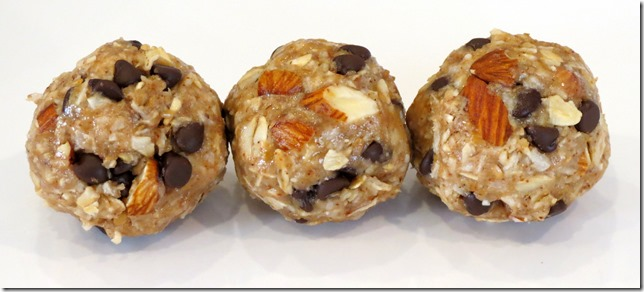 No Bake Coconut Almond Chocolate Chip Oat Bites