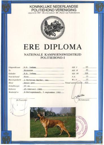 Ere Diploma Rico 1