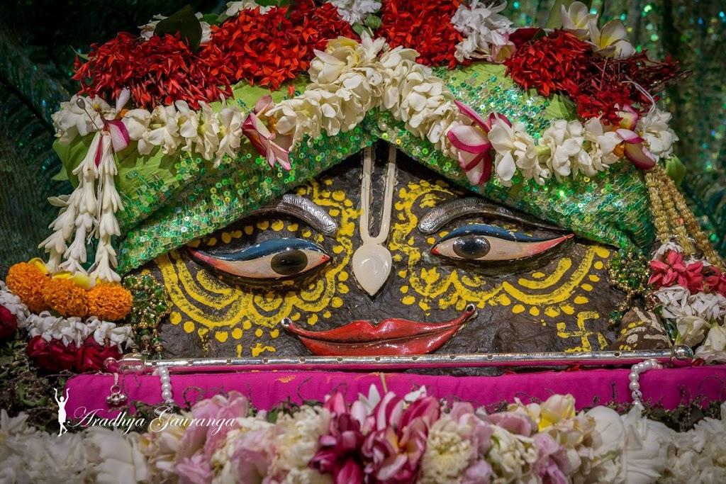 ISKCON Mayapur Deity Darshan 08 April 2016 (24)