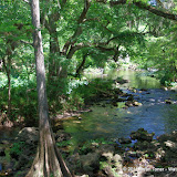 04-04-12 Hillsborough River State Park - IMGP9656.JPG