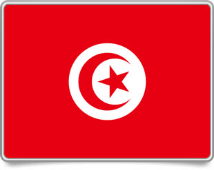 Tunisian framed flag icons with box shadow