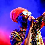 aFESTIVALS 2018_DE-AfrikaTage_03_bands_AnthonyB_web0570.jpg