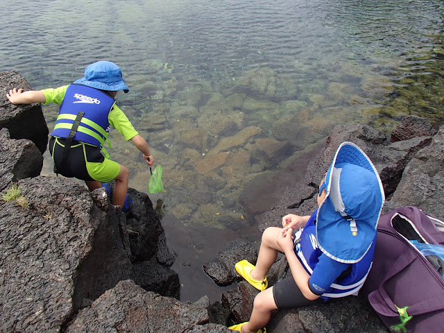 Snorkeling at Big Island tide pools