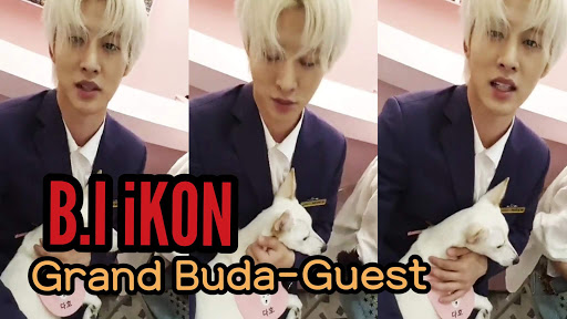190527 Hanbin, Seungyoon, and Seunghoon on Grand Buda-Guest Instagram Live