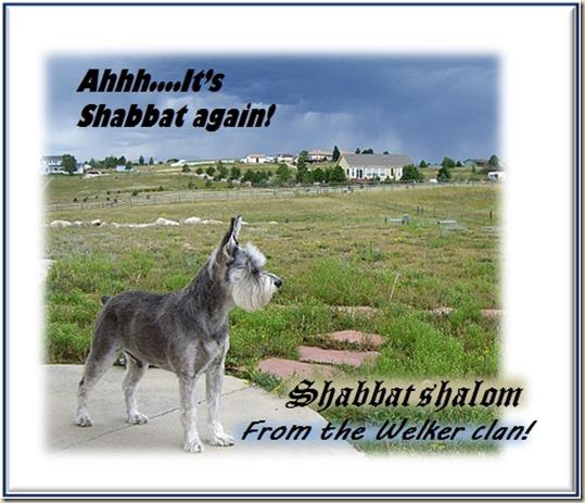 Poster_bat_shalom