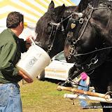OLGC Harvest Festival - 2011 - GCM_OLGC-%2B2011-Harvest-Festival-55.JPG