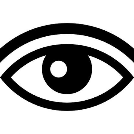 Enkel Gediplomeerde Opticiens