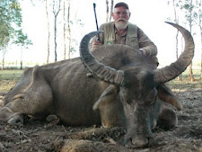 water_buffalo_hunting_4L.jpg