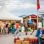 Afrika_Tage_Muenchen_© 2016 christinakaragiannis.com (43).JPG