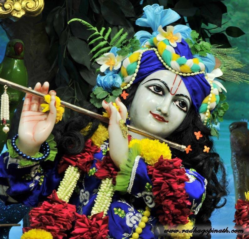 ISKCON Chowpatty Deity Darshan 22 Jan 2016 (17)