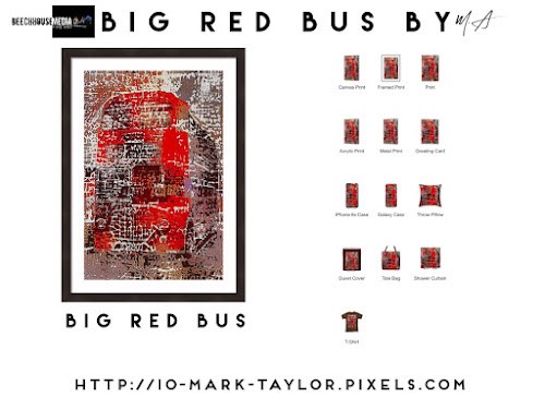 The Big Red Bus by Mark Taylor