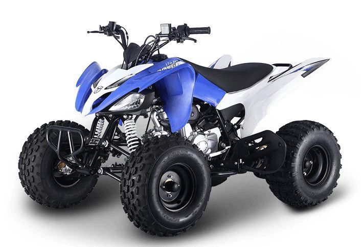 125cc Raptor Style Series 2 Rover Feral Sports Quad Bike - Blue