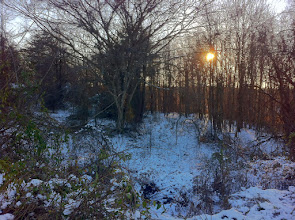 Photo: 1/4/14 - A winter landscape shot while walking my dog. Much of Old Virginia looks like this this time of the year.