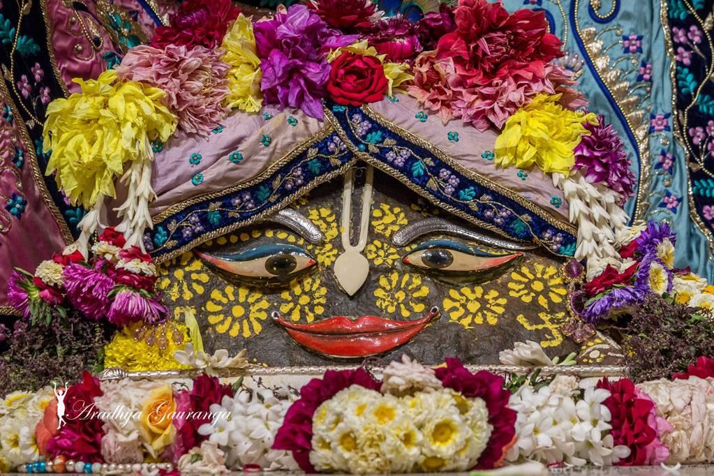 ISKCON Mayapur Deity Darshan 01 Mar 2016 (28)