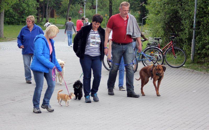 10. Mai 2016: On Tour mit Kultur am Universitätsgelände Bayreuth - Bayreuth%2BII%2B%252819%2529.jpg