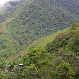 Las Juntas, 1500 m (Carchi, Équateur), 23 novembre 2013. Photo : J.-M. Gayman