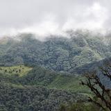 Route de Cuicocha à Apuela, 3000 m (Imbabura), 17 novembre 2013. Photo : J.-M. Gayman