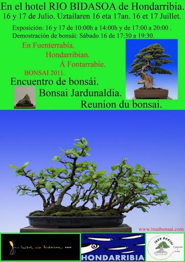 EXPOSICIONES Expo-irun-bonsai