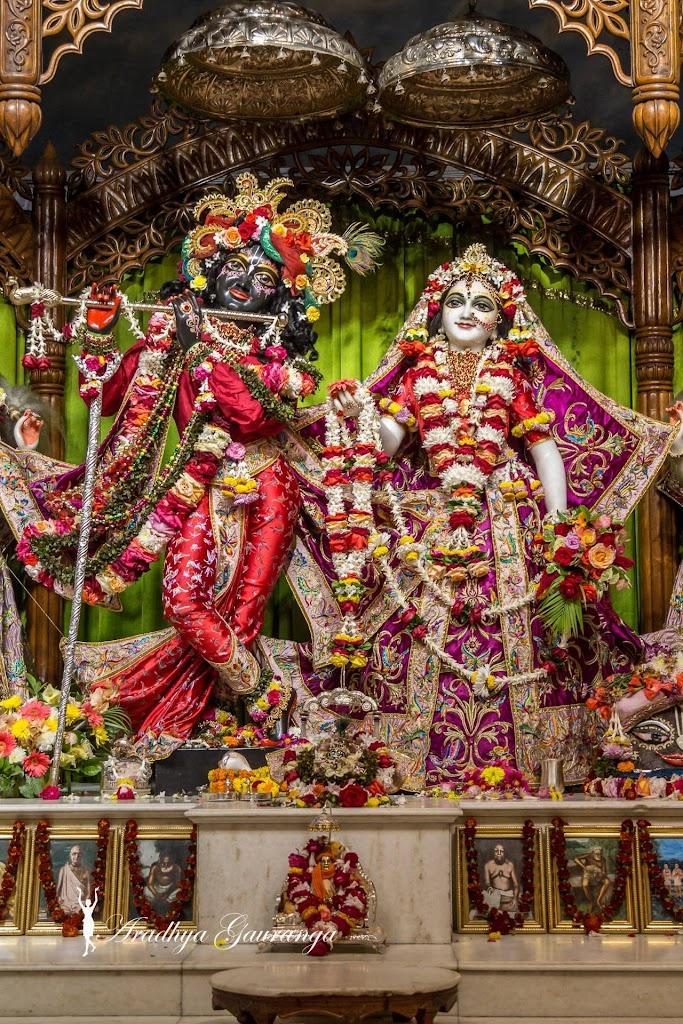ISKCON Mayapur Deity Darshan 11 Jan 2017 (18)