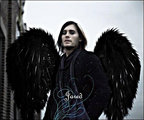 Black Angel Male, Angels 2