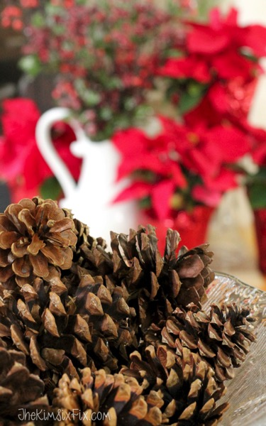 Pinecones in bowl at christmas