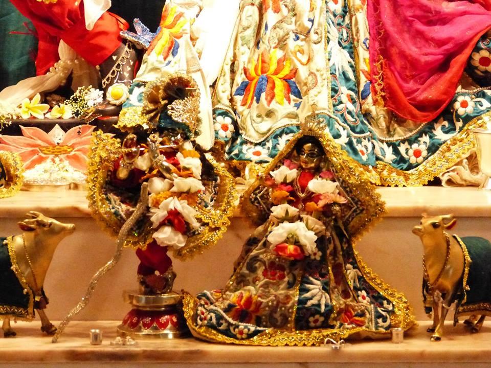 ISKCON New Govardhan Deity Darshan 12 Mar 2016 (14)