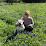 Adrienne Strange's profile photo