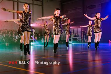 Han Balk Voorster Dansdag 2016-3623-2.jpg