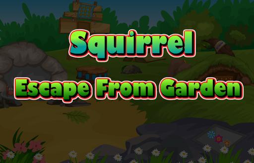 Squirrel Escape From Garden