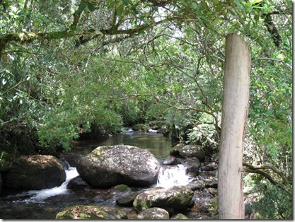 aiuruoca-trilha-cachoeira-do-fundo-3