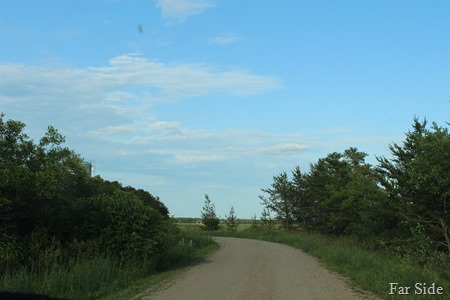 The driveway at the farm