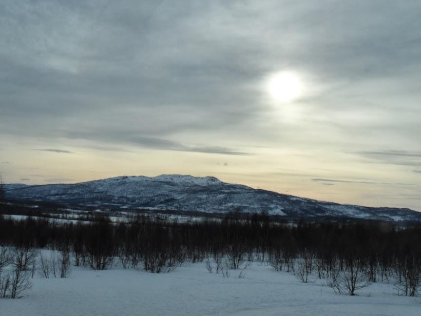 Norvège mars 2014 SAM_1411