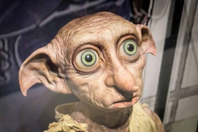 Biografia Elfo Dobby