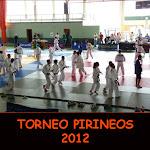 TORNEO PIRINEOS 2012
