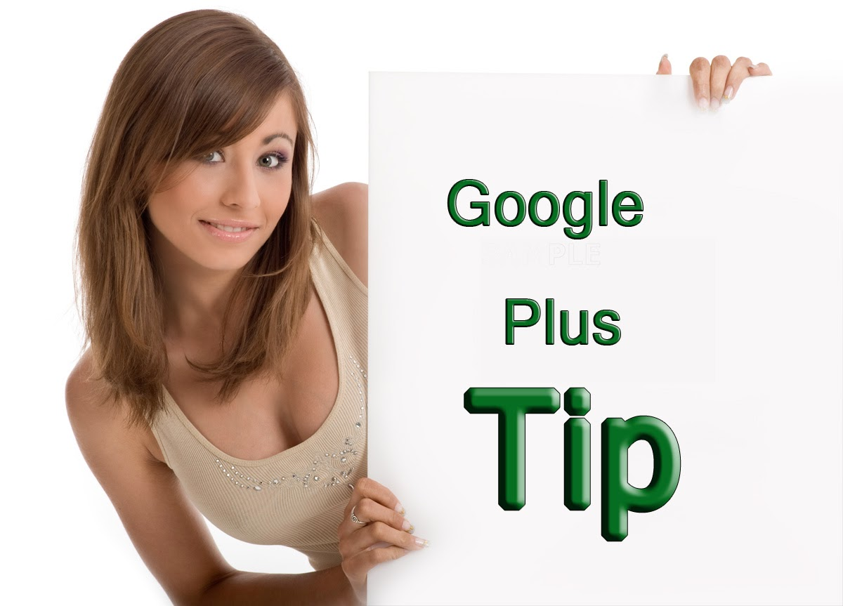 Page Rank and Google Plus Tip